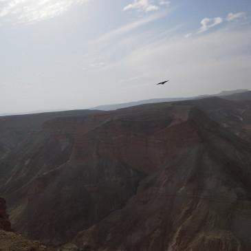 Palestina, face to face a Betlemme?